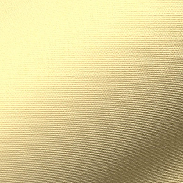 INTU Blinds Banlight Duo Fire Retardant Daffodil Roller Blinds Close Up