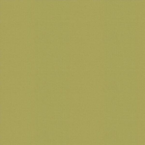 Banlight Duo FR Lime Roller Blind