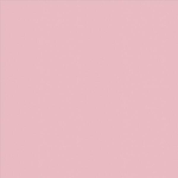 Banlight Duo FR Pink Roller Blind
