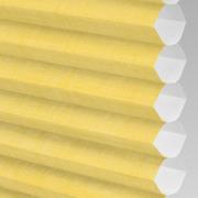 Hive_Deluxe_Lemon_PX74010